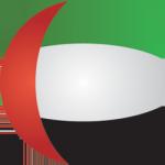 MENA flag